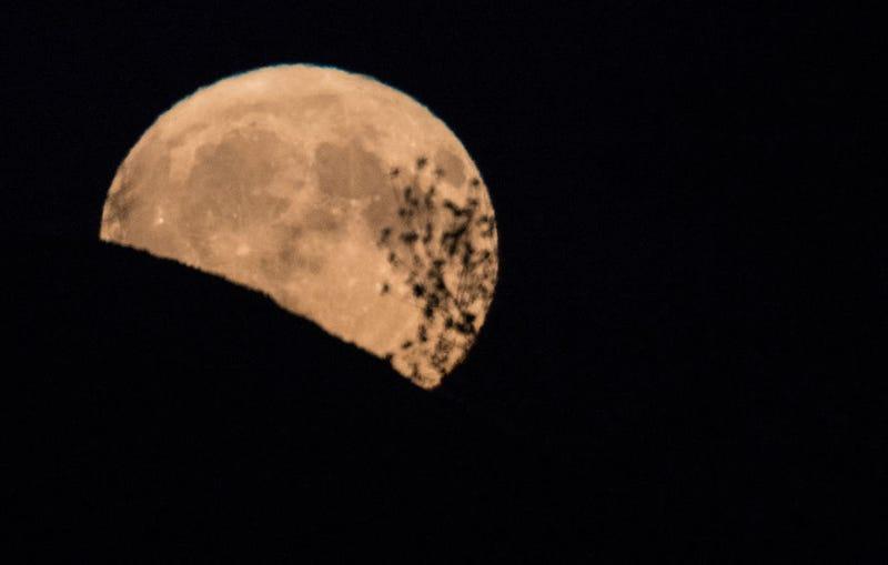 A harvest moon rises.