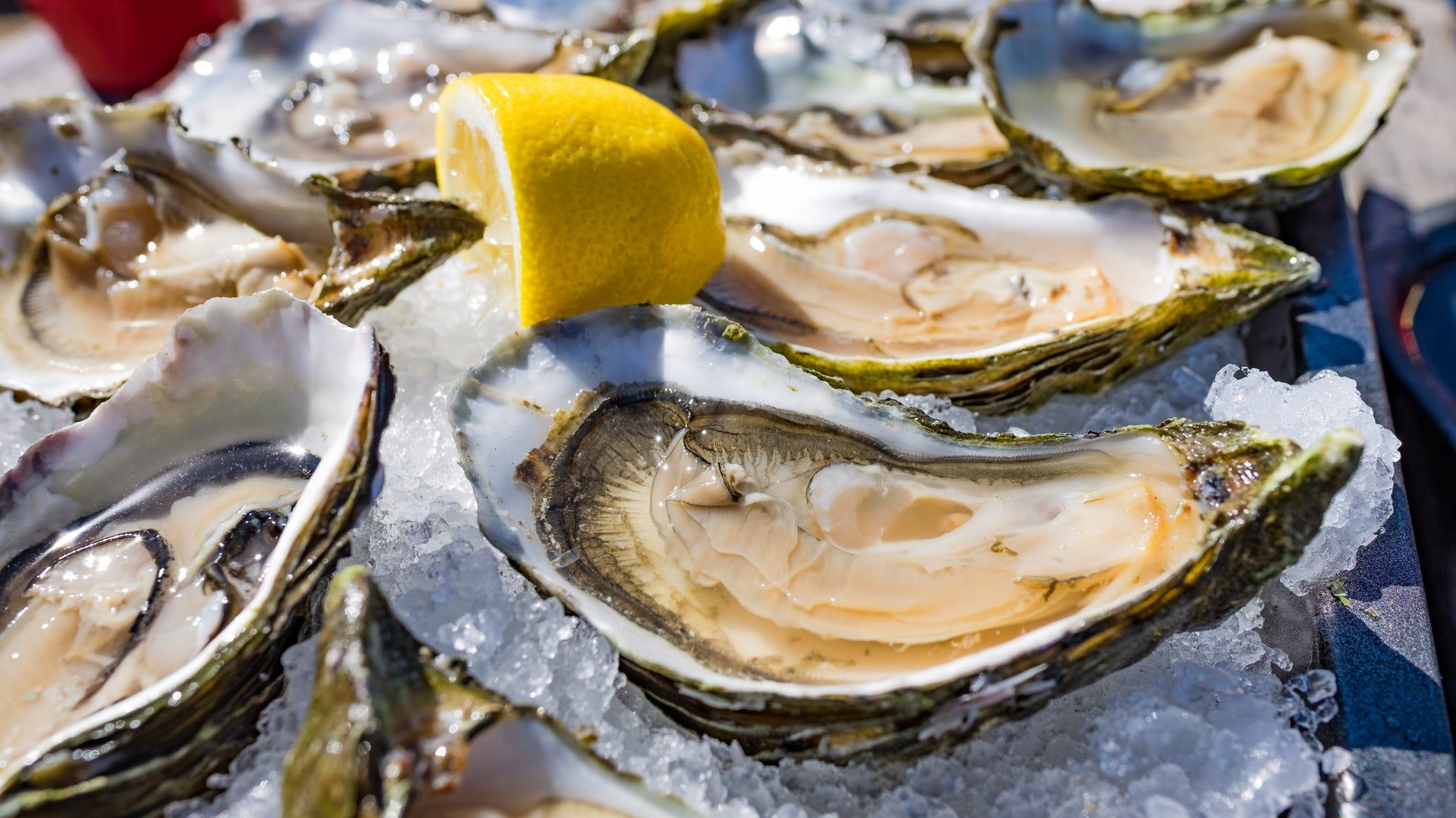 Multi-billion dollar Louisiana seafood industry still reeling from Hurricane Ida