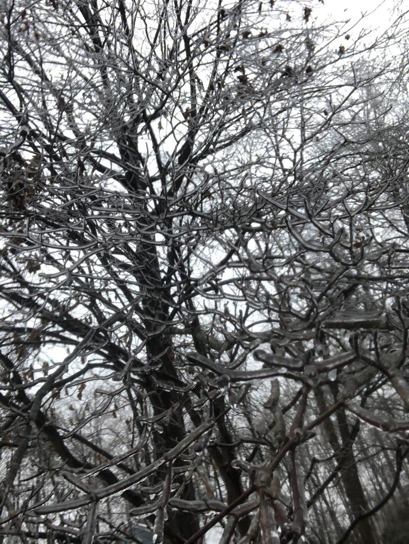 Ice in Midlothian