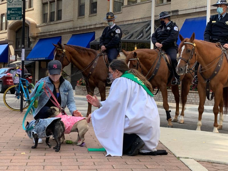 Chicago police horses among 60 pets blessed during church service
