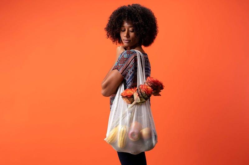 Mesh June's grocery bag