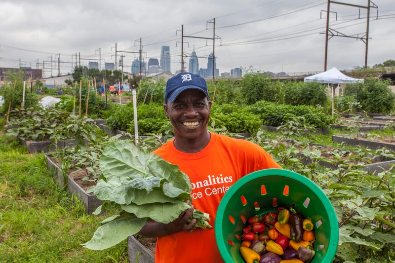 Pennsylvania Horticultural Society gardening