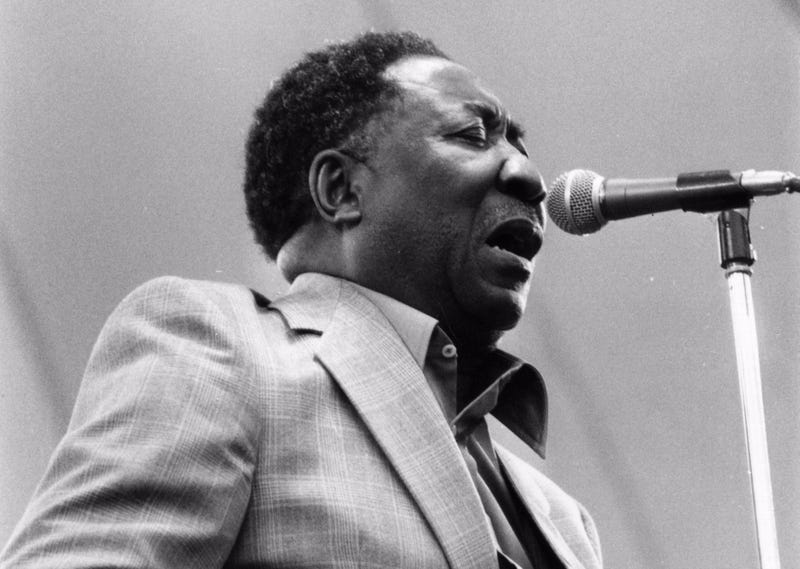 Muddy Waters Chicago Blues Musician