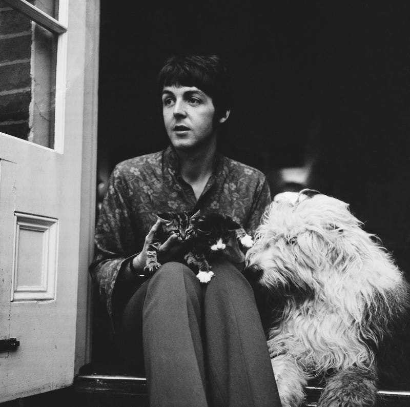 English singer-songwriter and musician Paul McCartney with his dog, English Sheepdog Martha, and two kittens at his house in St John's Wood, London, UK, 20th June 1967.