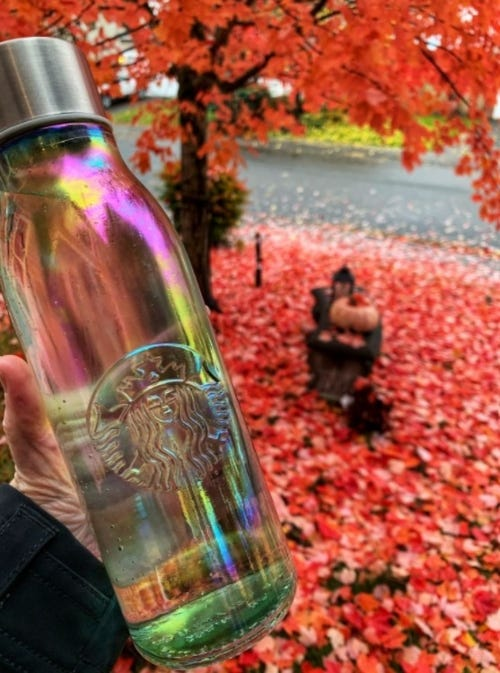 Sheryl's water bottle 1 Thing