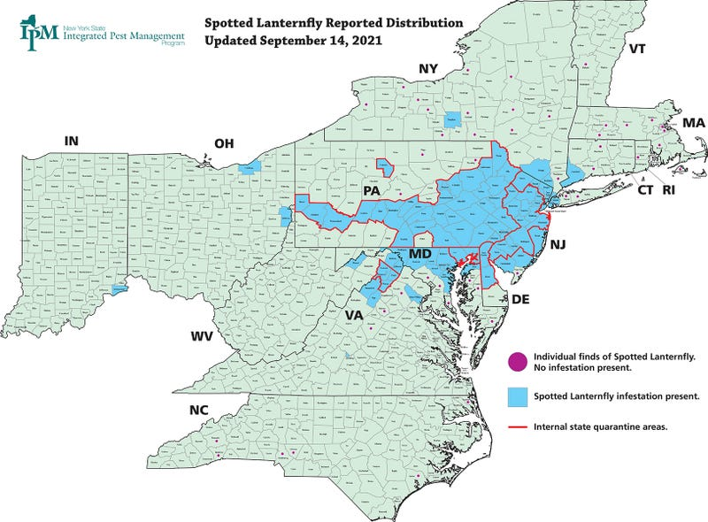 Confirmed Spotted Lanternfly Locations