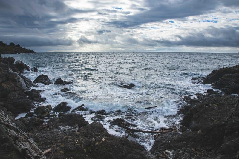 Lime Kiln Point rocky shores