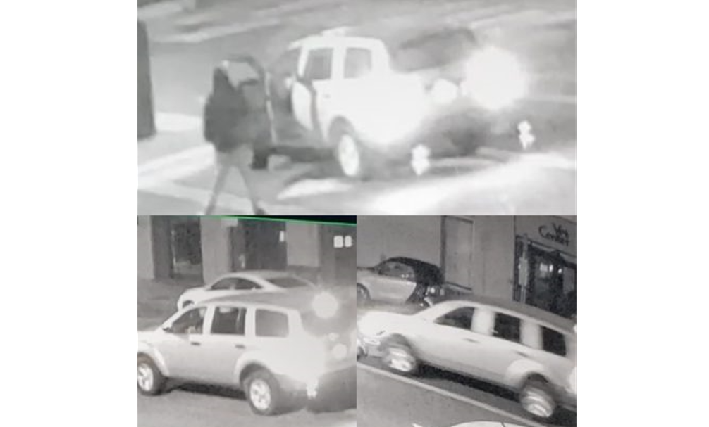 Police ask for public's help finding vehicle suspected in deadly Treasure Island hit-and-run