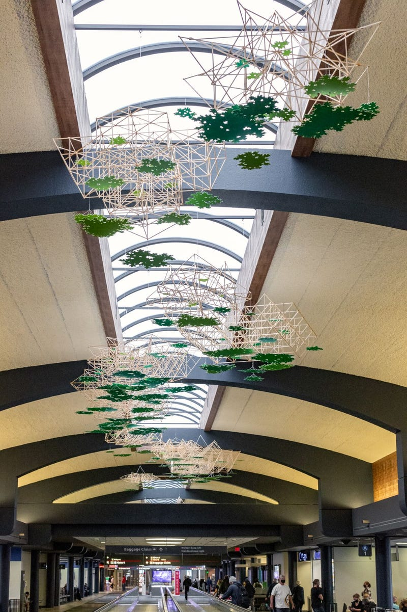 """""""Shy Canopy"""" at Pittsburgh International Airport"""