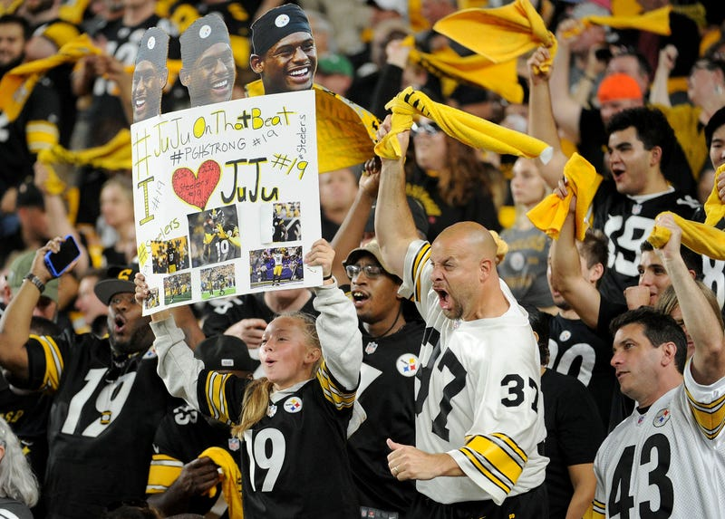 The Steelers have one of the largest fanbases in the NFL.