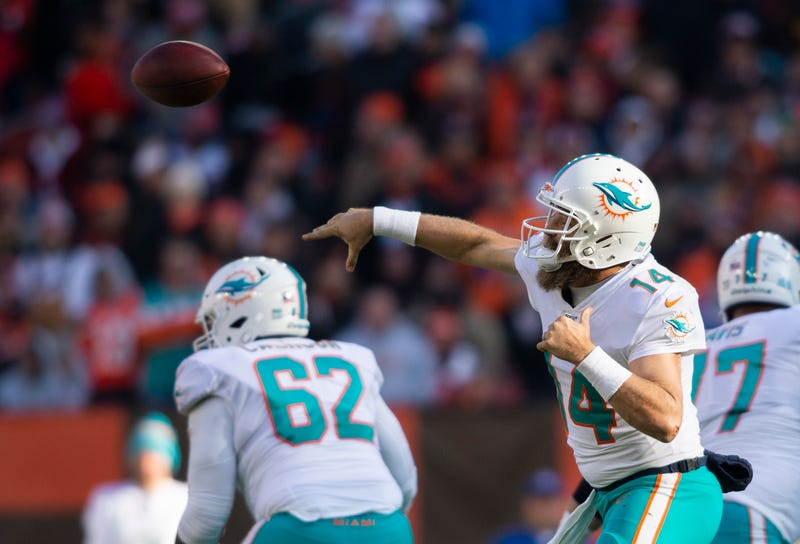 Ryan Fitzpatrick and the Dolphins lost in Week 12.