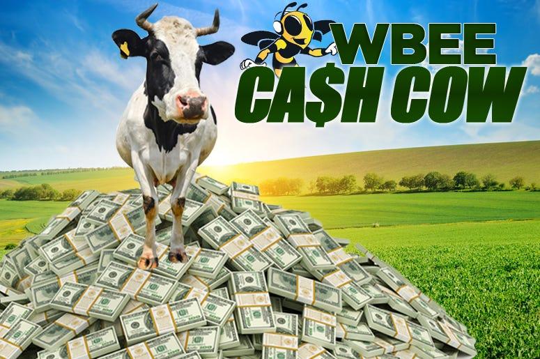 Cash Cow National Contest