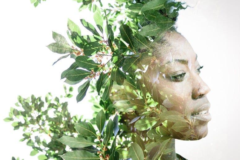 African woman Leaves Victor_Tongdee
