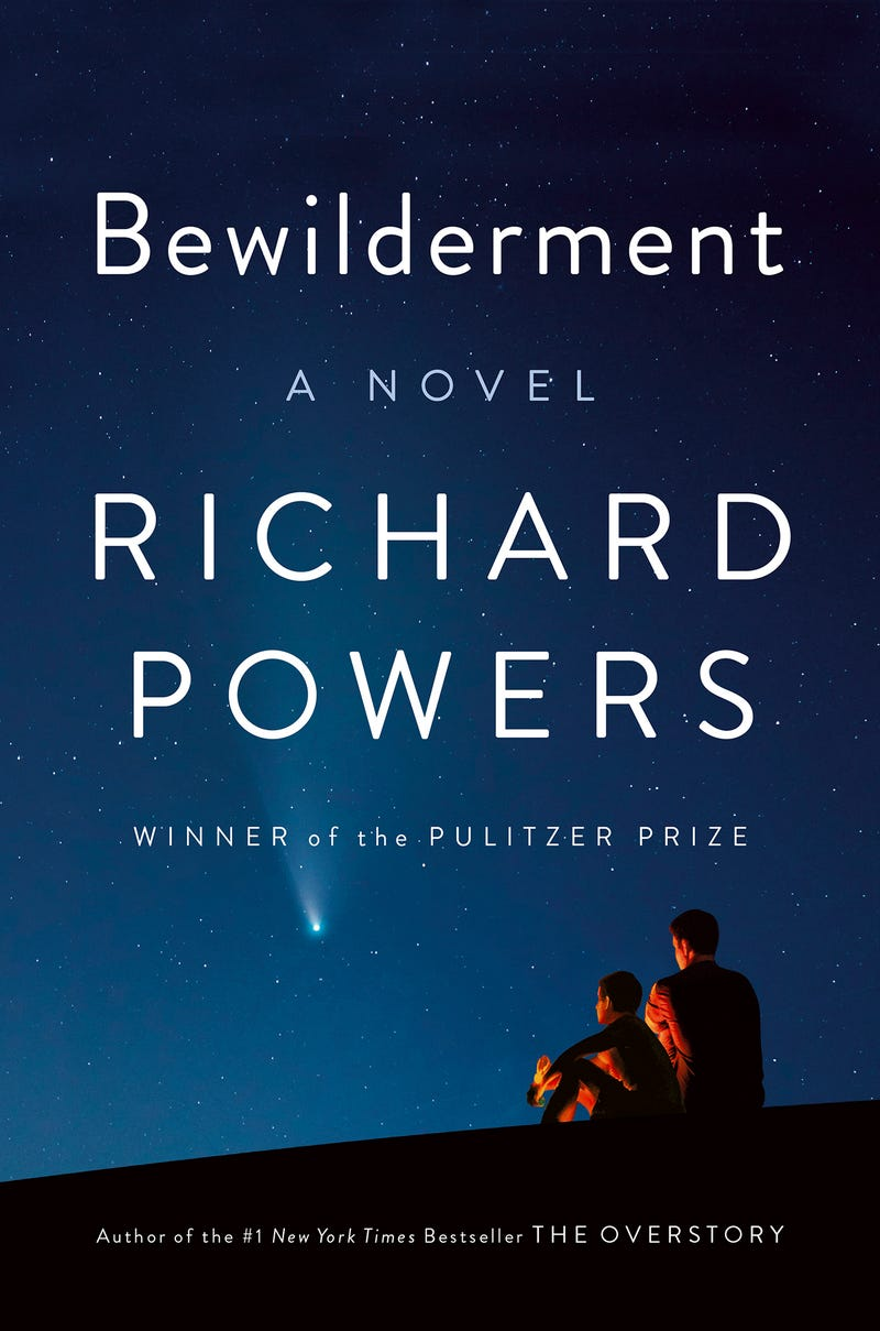Book Review - Bewilderment