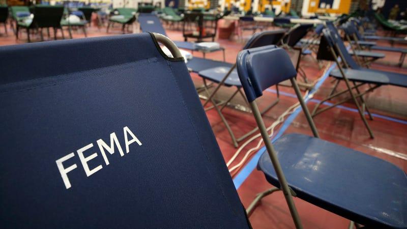 FEMA Harassment