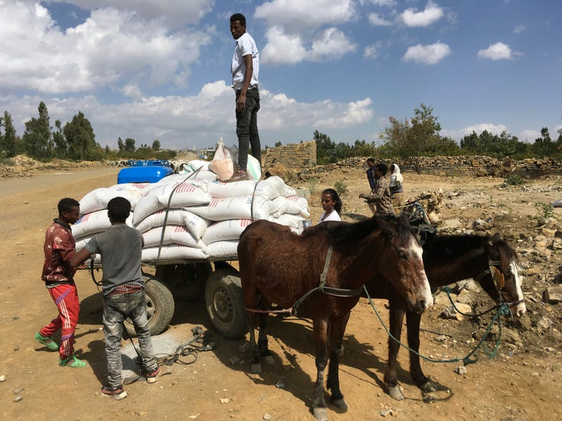 Ethiopia Hunger's Shadow