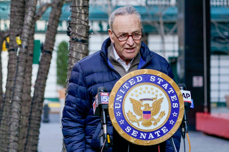 Congress Schumer