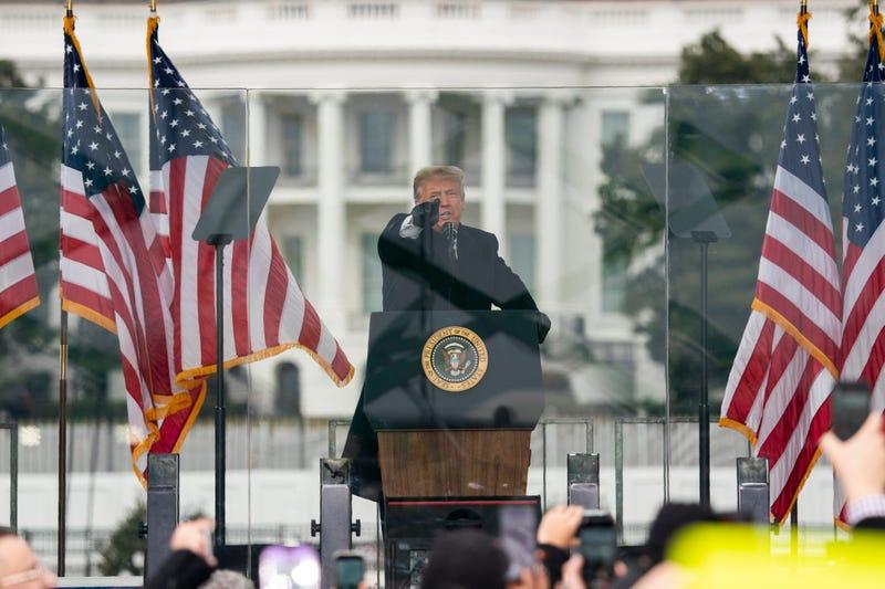 Trump Impeachment Rioters