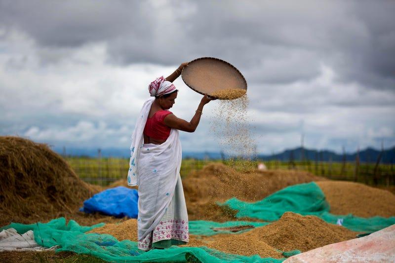 India Farm Bills