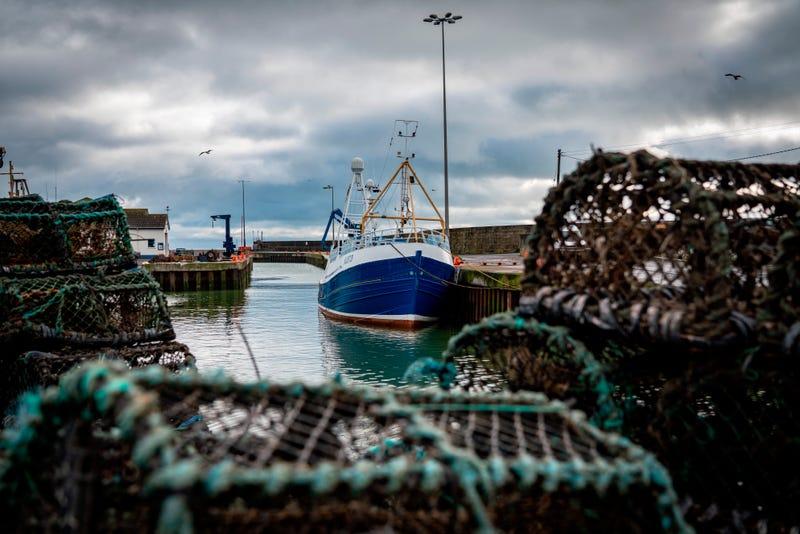 Brexit Fishy Talks