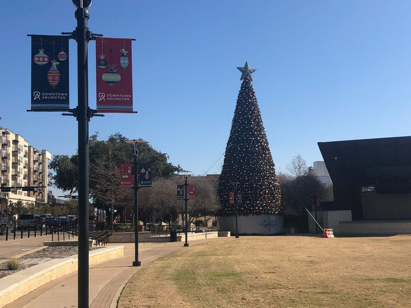 Arlington Christmas Tree