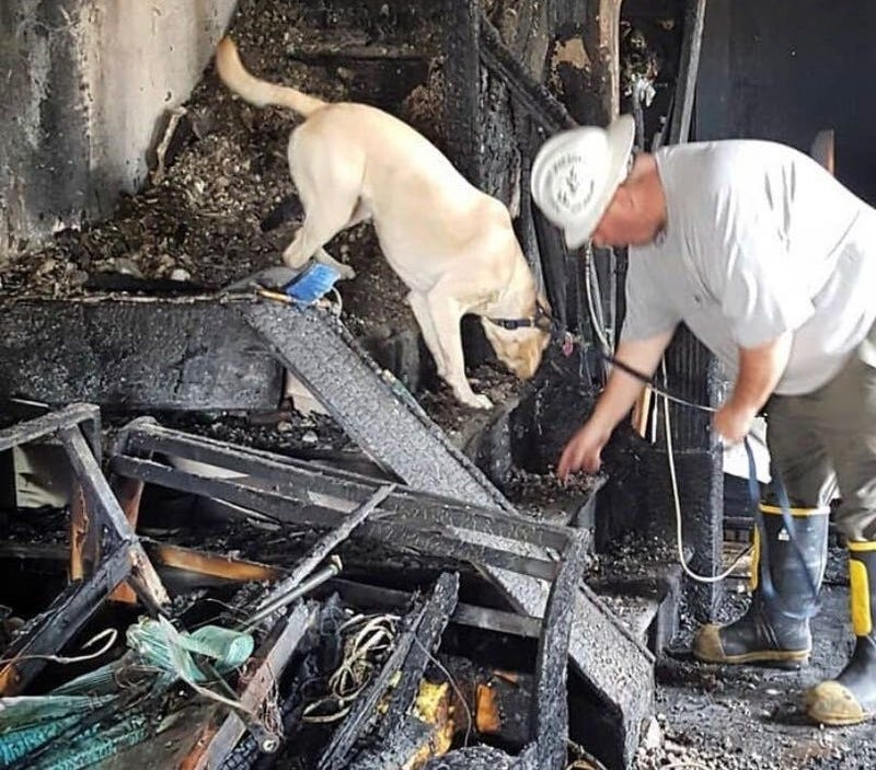 Members of the Philadelphia Arson and Explosives Task Force investigate damage caused by a fire.