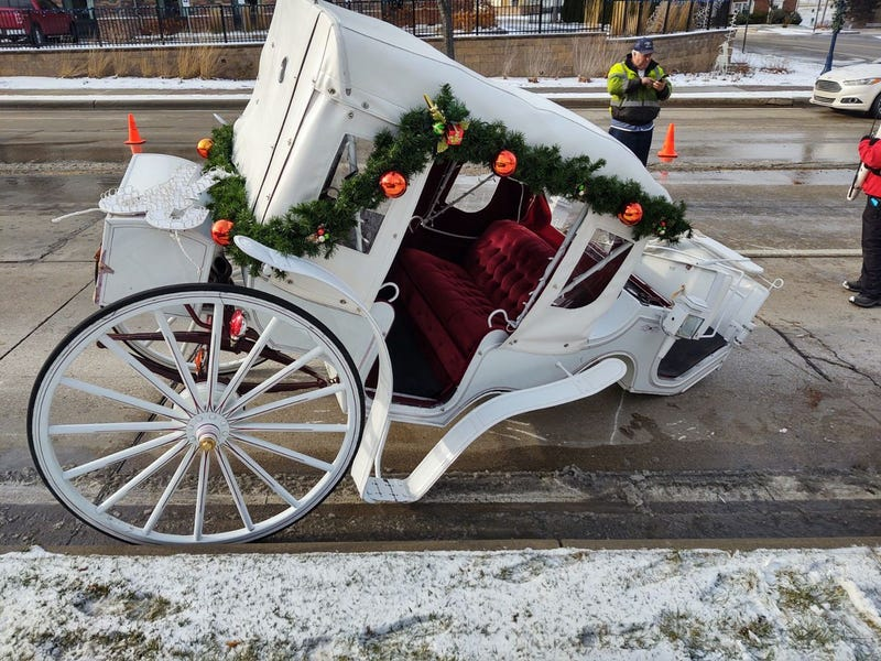 Frankenmuth carriage hit-and-run