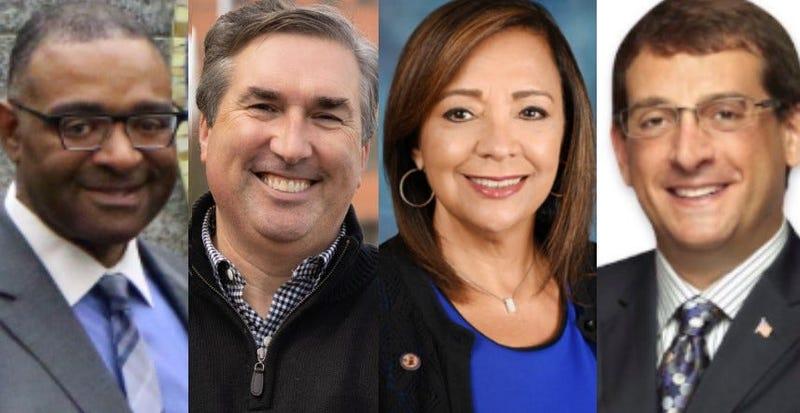 Cook County Circuit Court Clerk Candidates Democrats