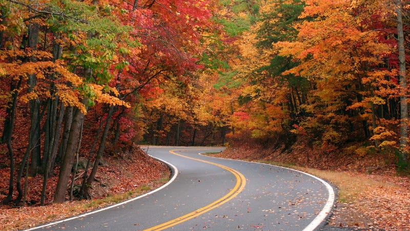Winding country road through fall foliage