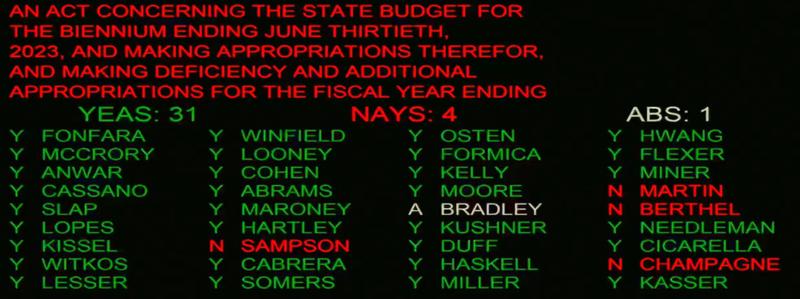 Senate passes budget