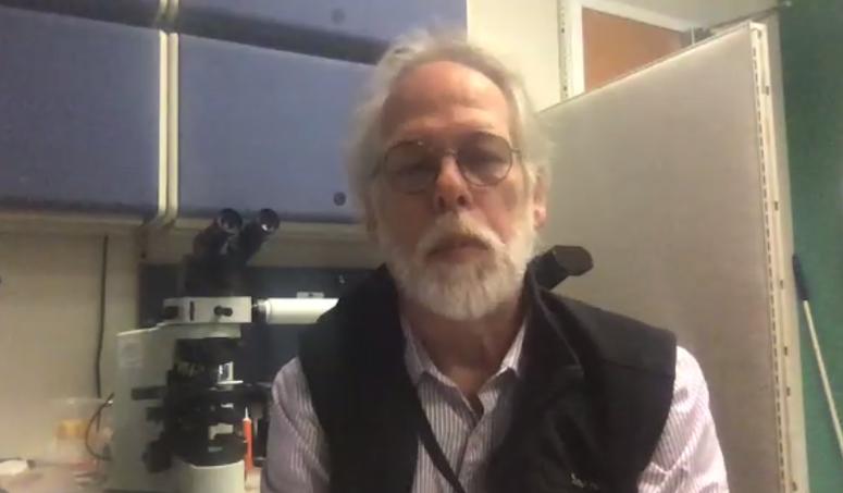 Dr. Robert Rainer