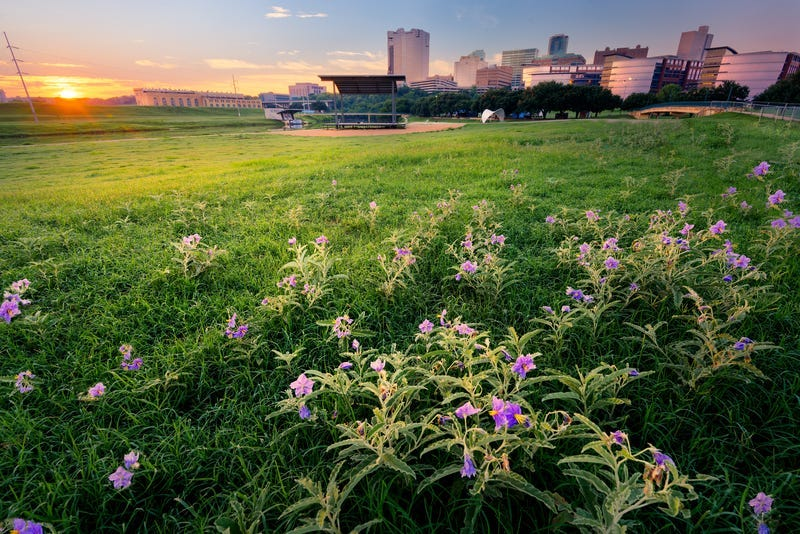 Fort Worth, Panther Island
