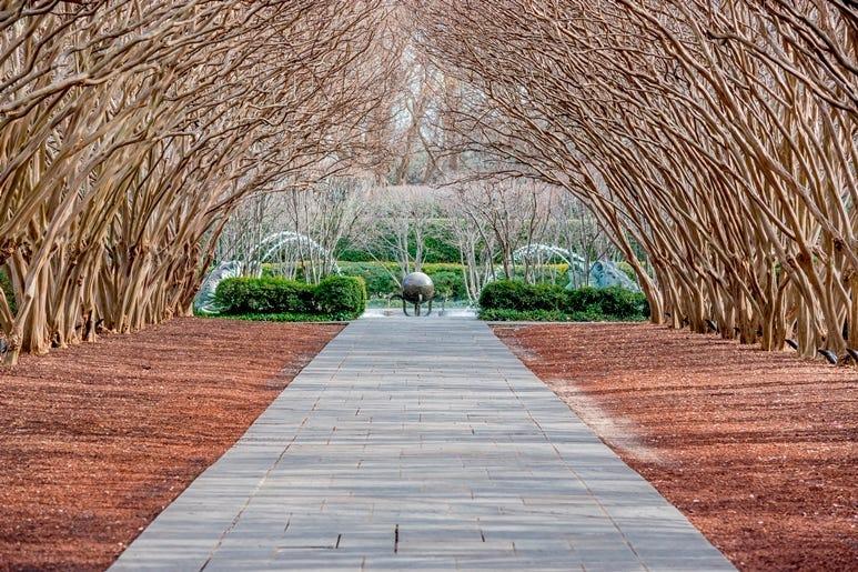 Dallas Arboretum and Botanic Garden in Winter