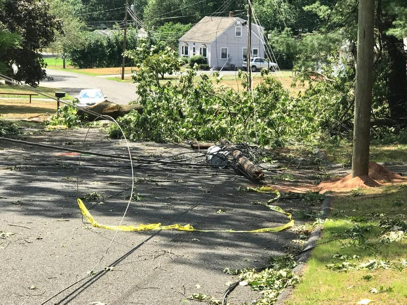 Isaias damage in Connecticut