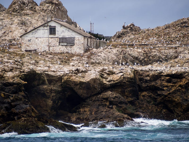 A view of a weather-beaten building on the Farallon Islands off the coast of California.