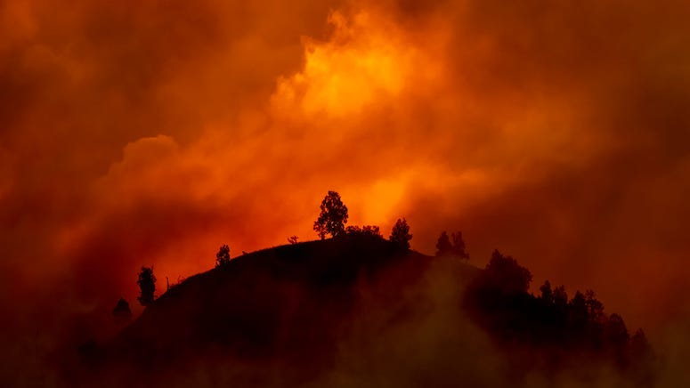 Fire, Wildfire, California, Hill, Trees