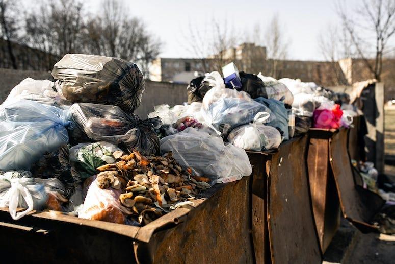 Dumpster, Trash, Litter, Garbage, Garbage Bin