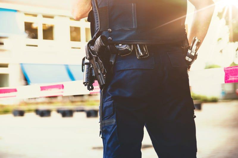 Police in school