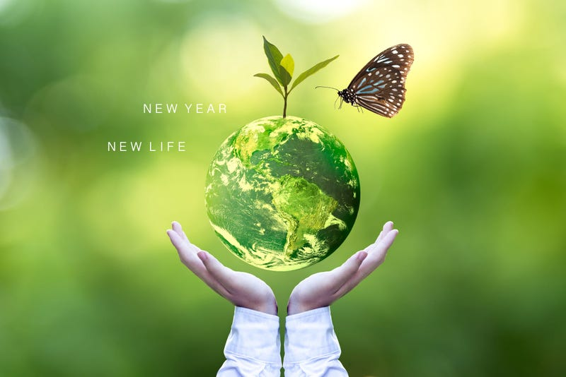 Sustainable 2020