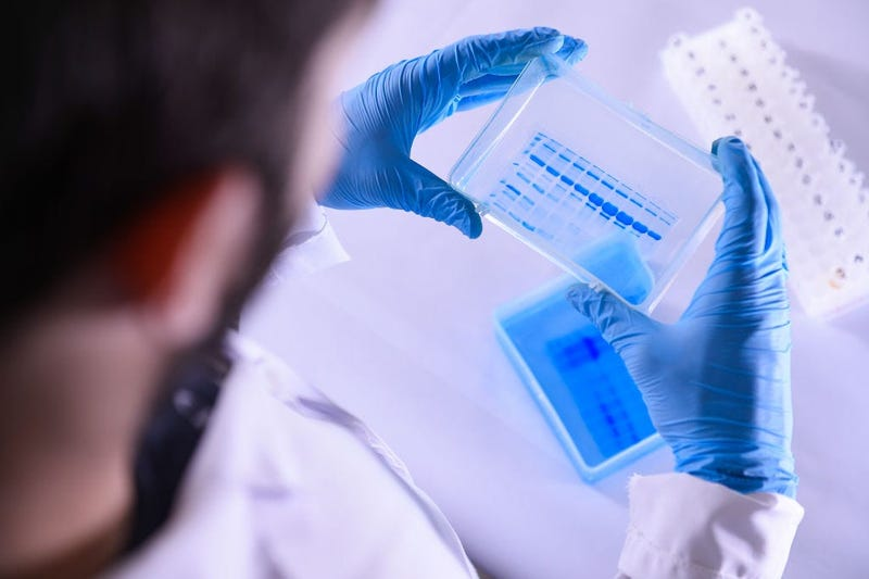 coronavirus, test, cure