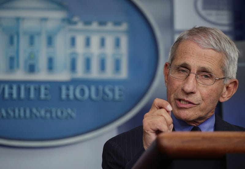 Dr. Anthony Fauci, director of the National Institute of Allergy and Infectious Diseases, speaks during the daily briefing of the White House Coronavirus Task Force, at the White House April 17, 2020 in Washington, DC.