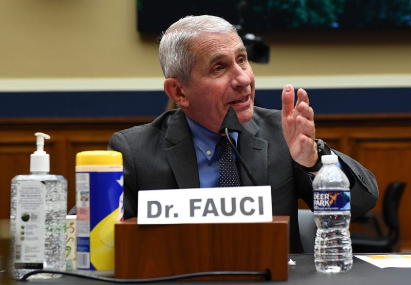Dr. Anthony Fauci, director of the National Institute of Allergy and Infectious Diseases, testifies at a hearing of the U.S. House Committee on Energy and Commerce on Capitol Hill on June 23, 2020 in Washington, DC.