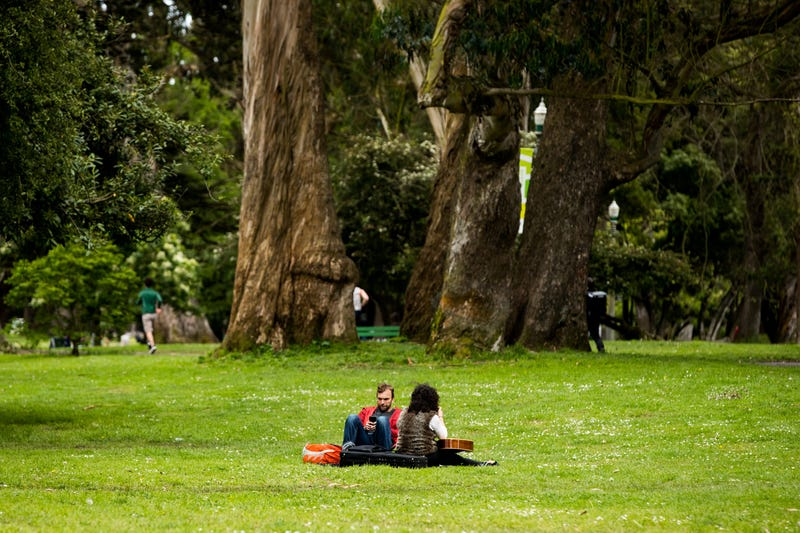People sit on the grass in Panhandle Park during the coronavirus pandemic on May 02, 2020 in San Francisco, California.
