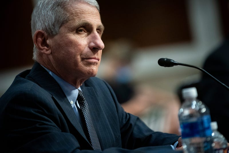 Dr. Anthony Fauci, director of the National Institute of Allergy and Infectious Diseases, listens during a Senate Health, Education, Labor and Pensions Committee hearing on June 30, 2020 in Washington, DC.