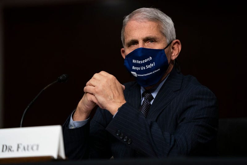 Dr. Anthony Fauci, director of the National Institute of Allergy and Infectious Diseases, testifies at a hearing of the Senate Health, Education, Labor and Pensions Committee on September 23, 2020 in Washington, DC.