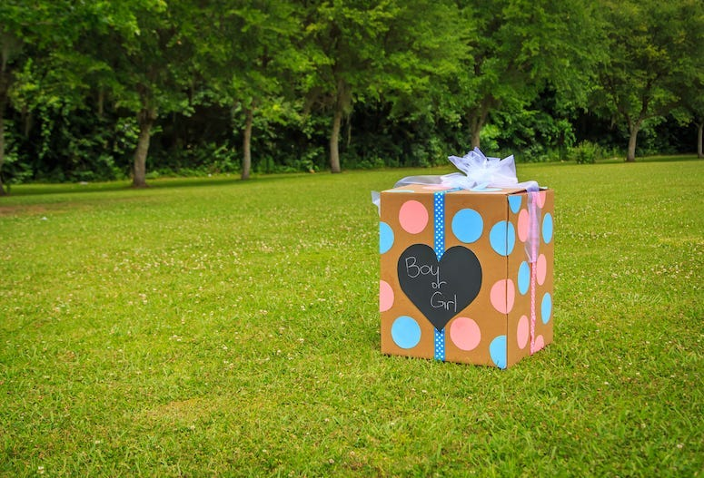 Gender Reveal Party, Box, Backyard, Boy or Girl