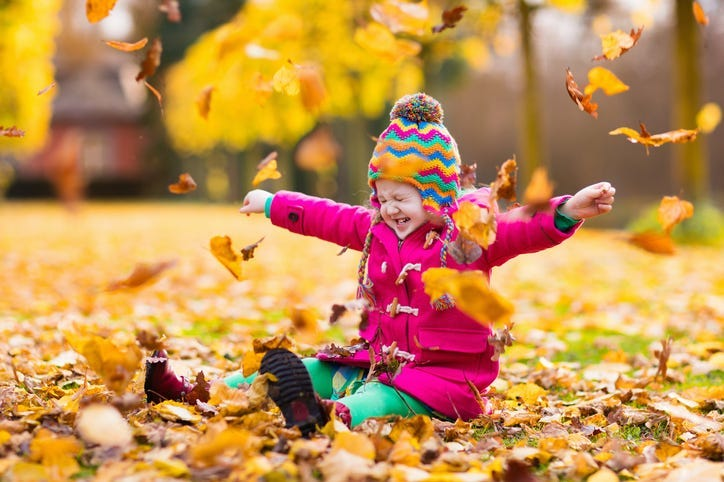 Kid Playing in the leaves
