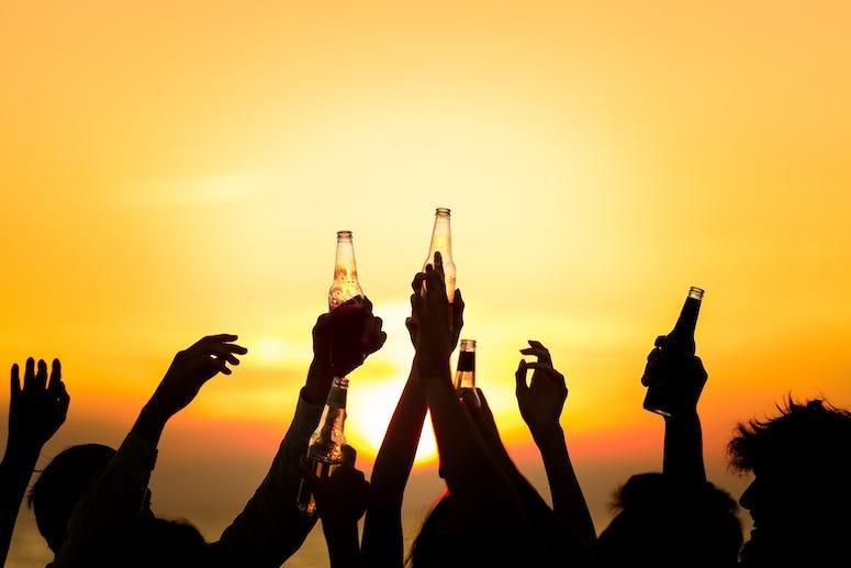 Friends, Beach, Beer, Bottles, Toast, Sunset