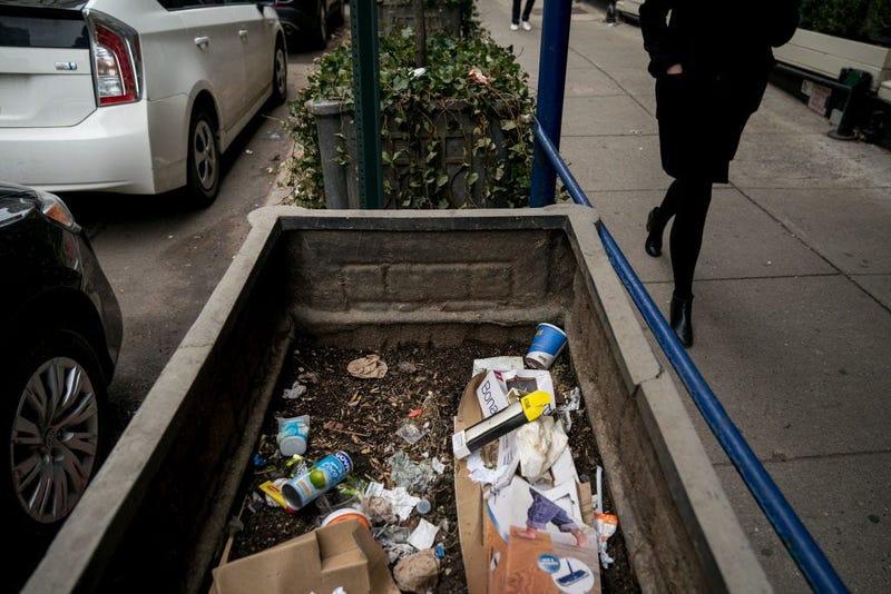 New York City Litter