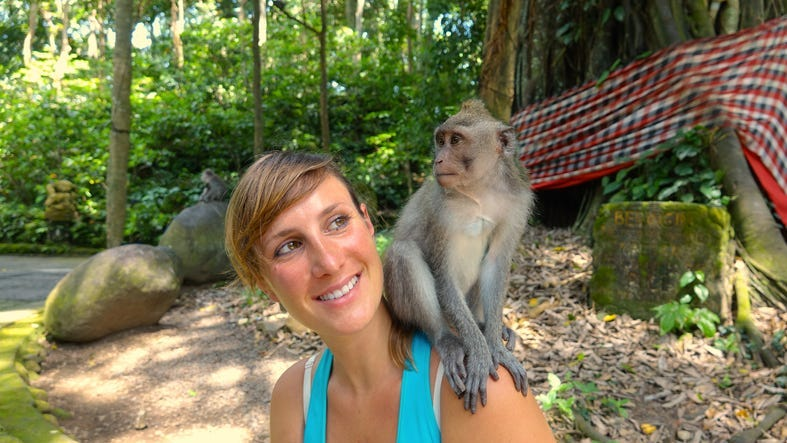 Young Caucasian traveler looking at little macaque on her shoulder. - stock photo